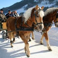 Pferdekutschenfahrt - Schladming-Dachstein - Ramsau